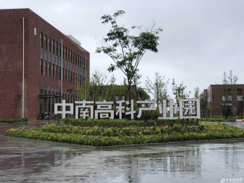 中南高科标准厂房出租8.1米层高独栋花园式办公图片4
