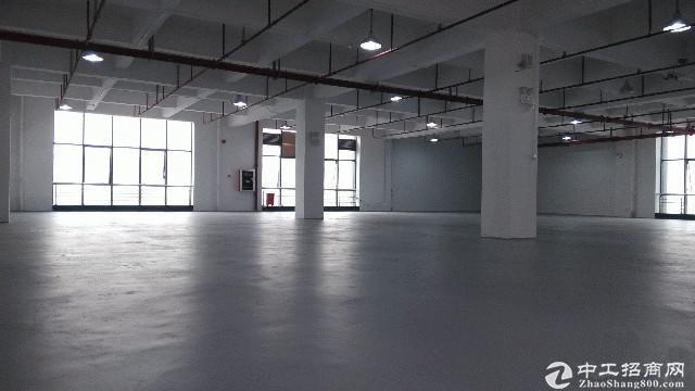 双凤开发区中南高科标准厂房出售