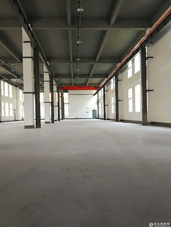 武汉白沙洲400-3200厂房,7.2层高,50产