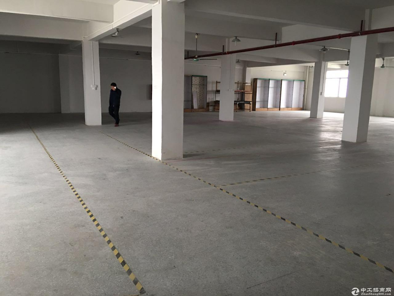 高新区全新铁皮标准厂房2400平方(9米高)