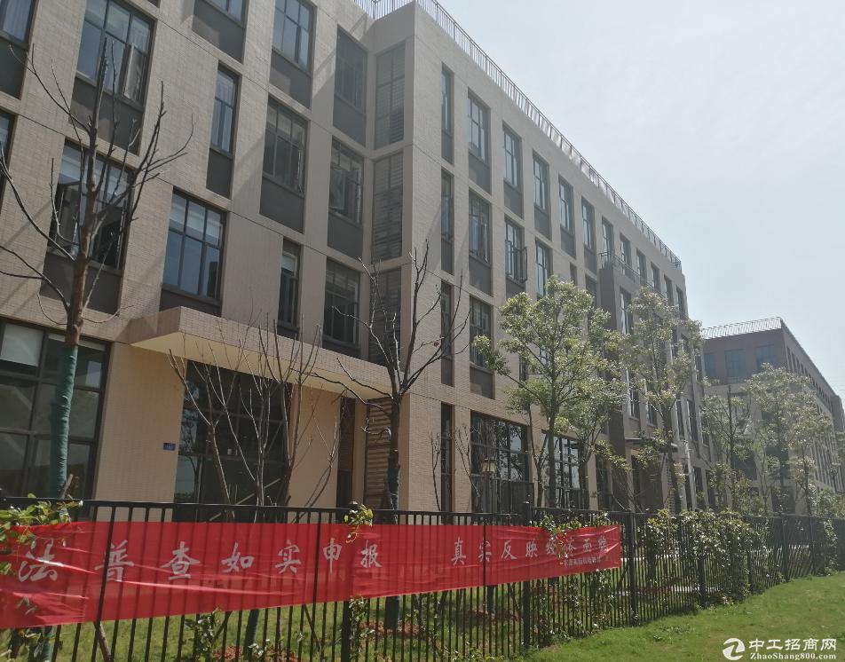 出售江夏东湖高新标准厂房