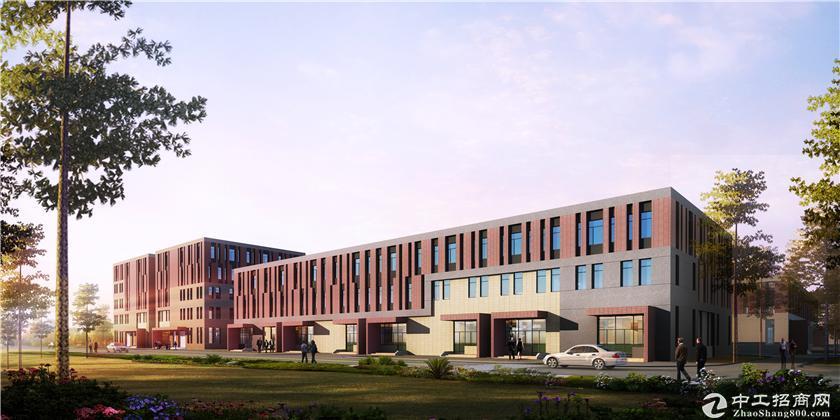 双凤开发区标准厂房 8.1米层高 50年独立产权图片3