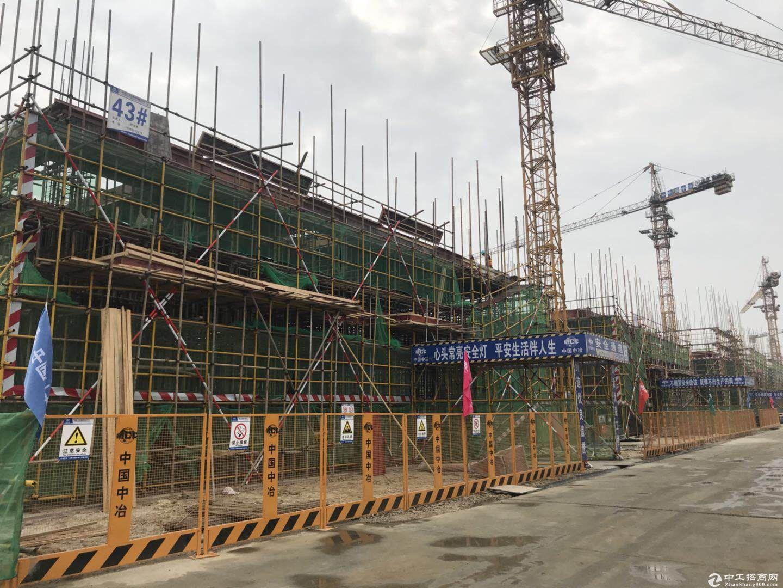 双凤开发区标准厂房 8.1米层高 50年独立产权图片4