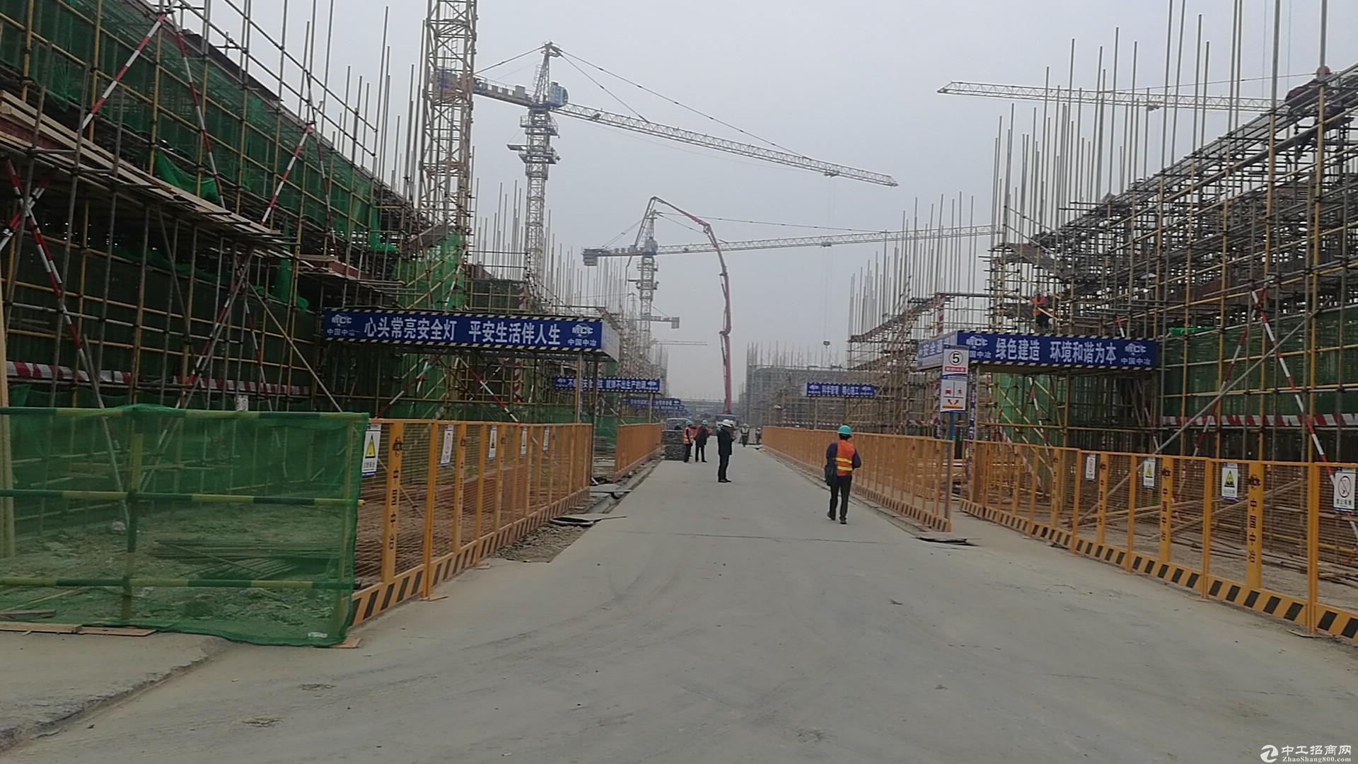 双凤开发区标准厂房 8.1米层高 50年独立产权图片5