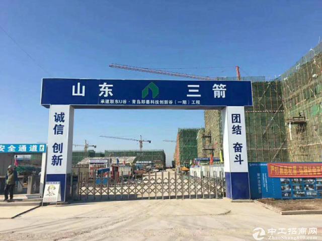 标准厂房出售 分层独栋 高新技术产业区 50年产权 双证 可贷款