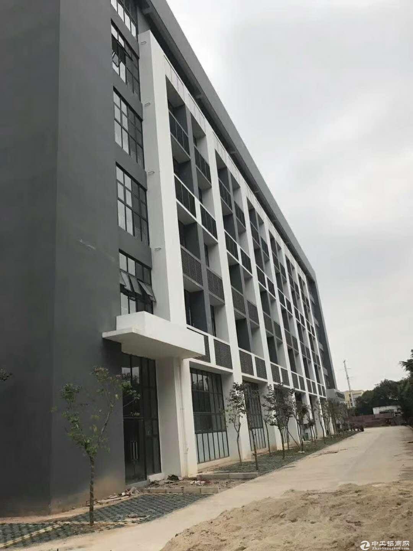 50年产权6米层高可按揭标准厂房出售