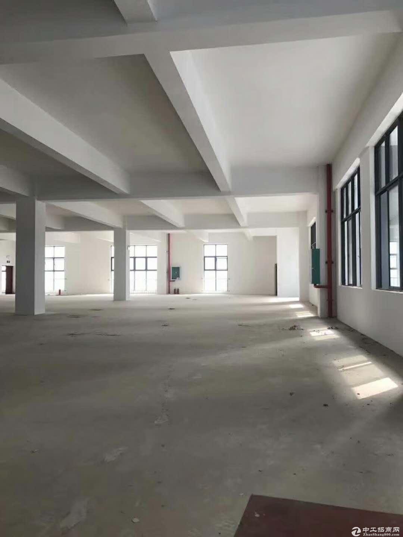 50年产权6米层高可按揭标准厂房出售-图3