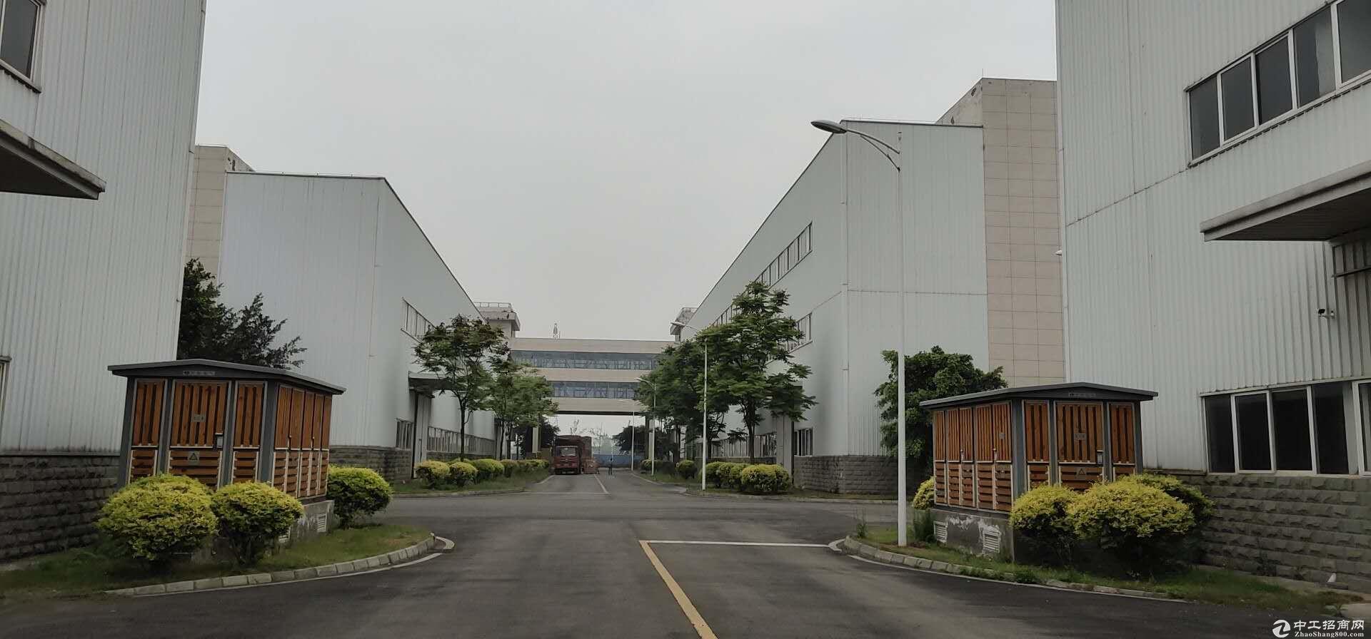 龙泉驿工业园区标准厂房库房出租1000-10500平出租