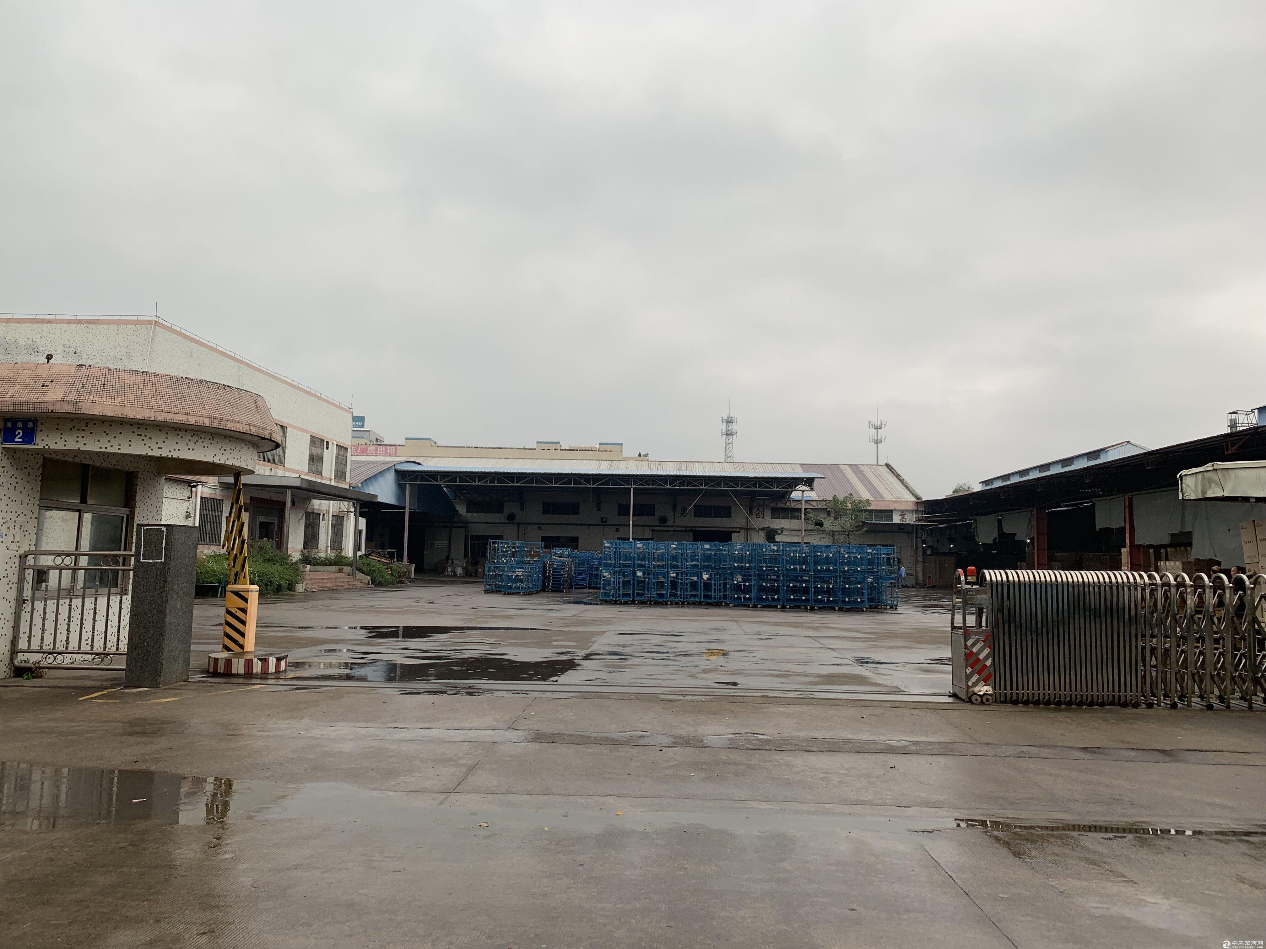 (独门独院)黄圃镇13500方单一层厂房火热招租