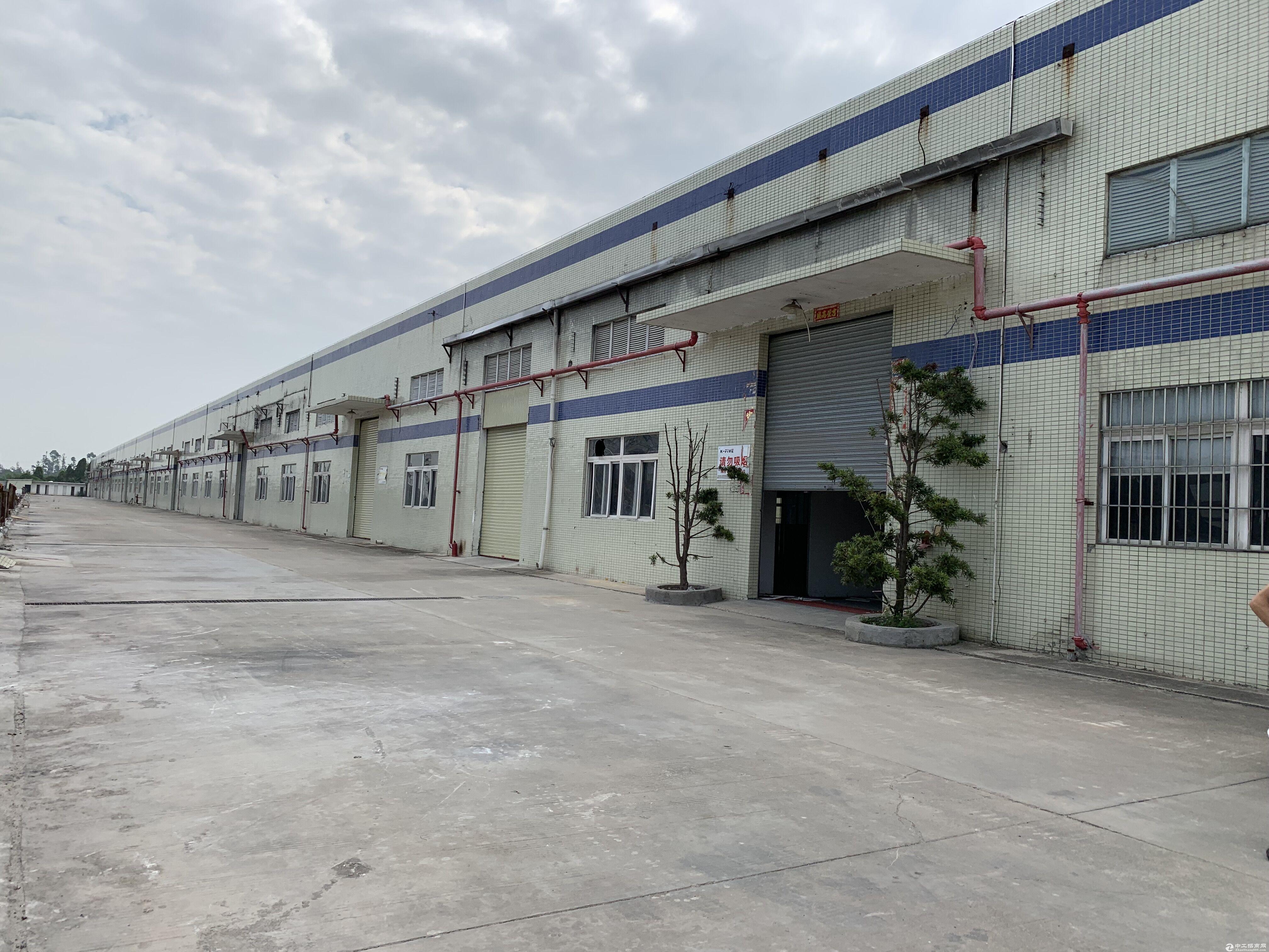 (原房东)三角镇7500方单一层厂房火热招租