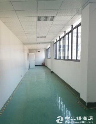 出租寸滩标准厂房1100平米