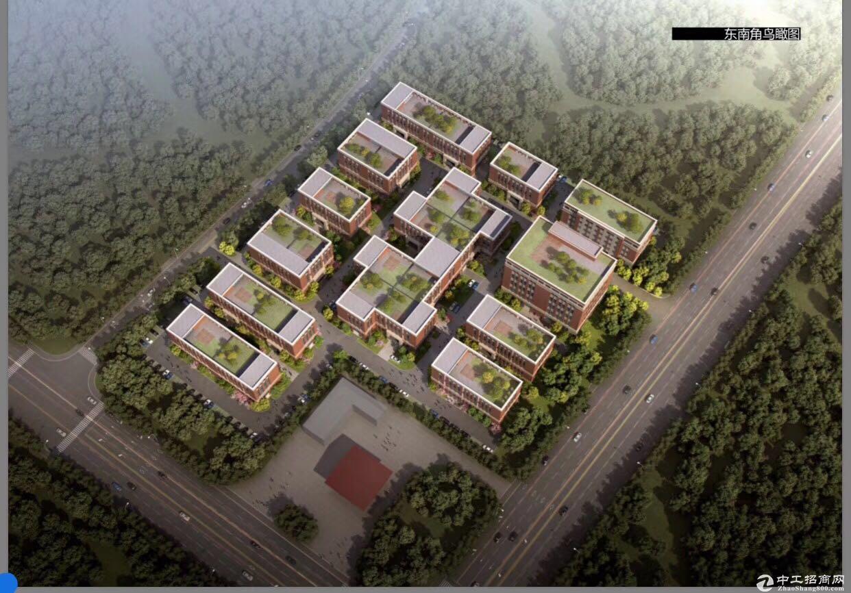8.1米层高 花园式厂房出售 独立院子带停车位