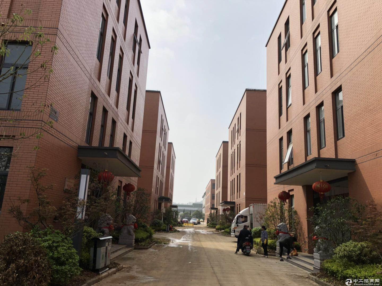 出售 新港全新花园式独栋厂房 两证齐全 (非中介)图片3