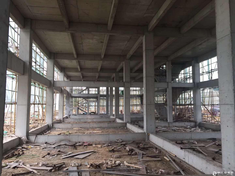 高新独栋厂房在售容积率低柱间距8.9米-图2