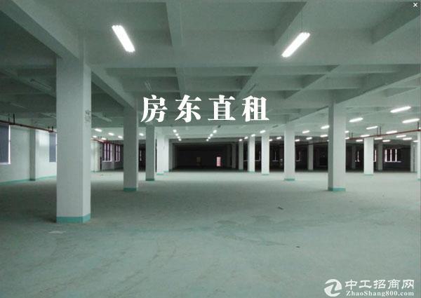 昆山高新区元丰路9139.19平米 独栋厂房出租