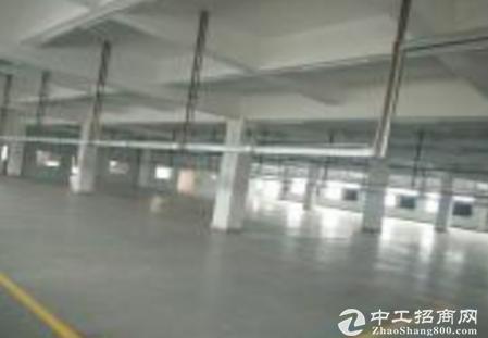 东莞茶山一楼400平厂房招租现成办公室 采光好