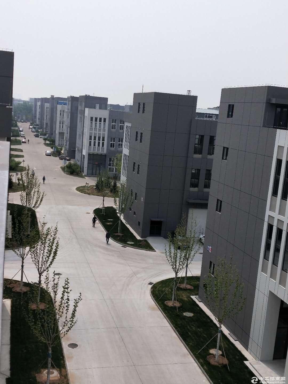 出售厂房,花园式标准园区,现代化标准厂房,多行业准入-图3
