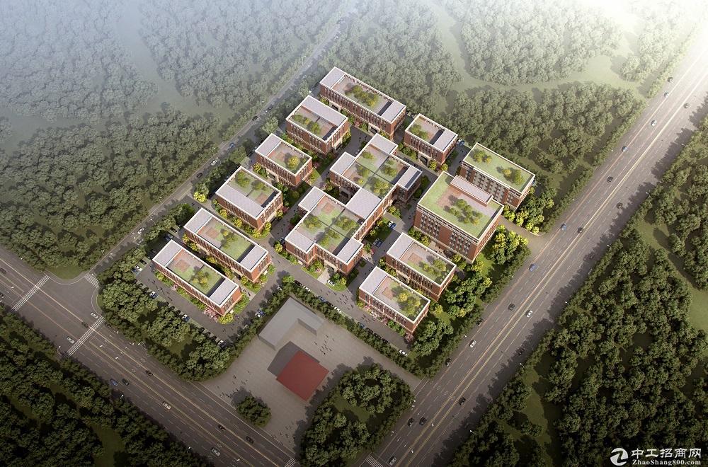 江宁高新区,中海外·智荟港 一期项目可分割产权厂房