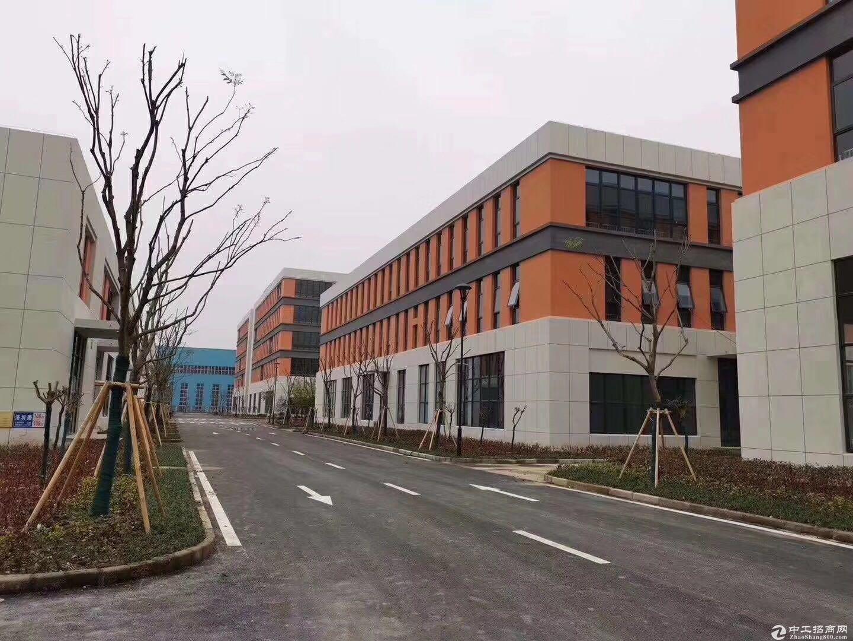 南京 江北 全新厂房 独立产权 可贷款