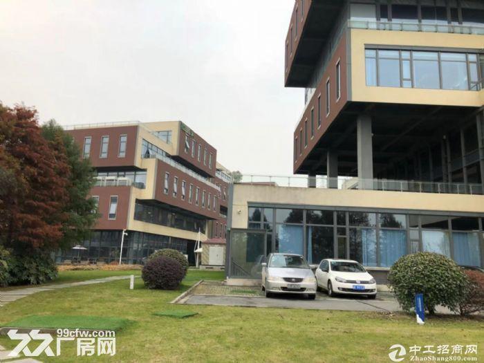 政策好600到3600m²全新厂房,50年产权,8,9米层高,可按揭