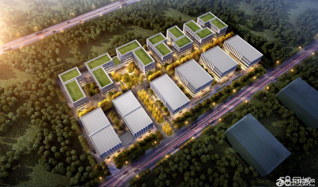 到上海一小时车程1000m²全新厂房,50年产权,6米层高,可按揭