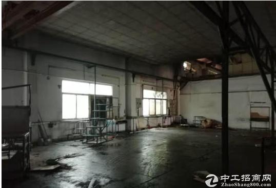 东莞茶山原房东800平方独院厂房出租