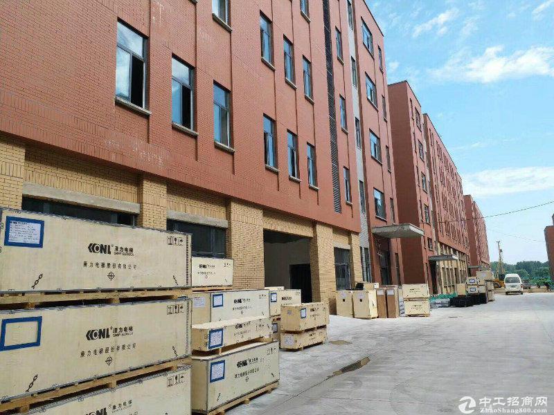 出售 中原区 分层独栋准现厂房 正规园区-图5