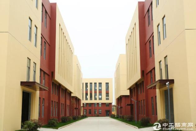 江北新区 高新园区花园式标准工业厂房