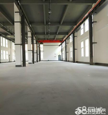 厂房出售 50年产权 首层7.2米 双证齐全-图3