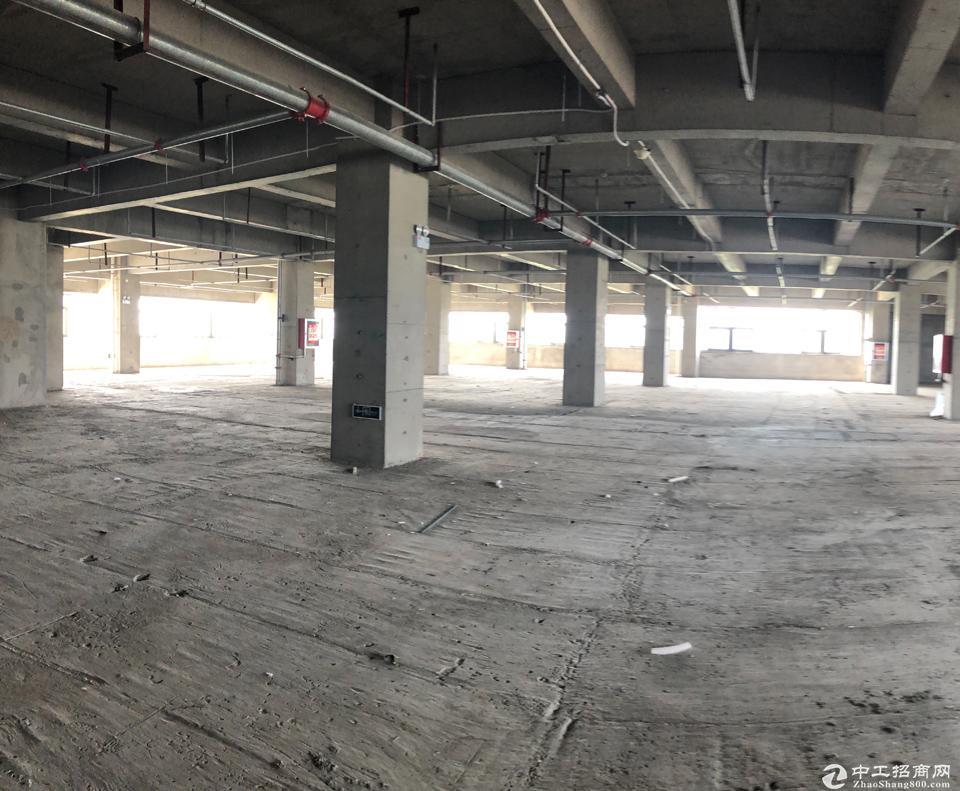 肇庆新港附近,标准厂房出售,可贷款,无污染行业