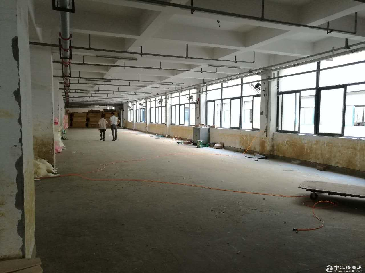 桥南开发区无税收仓库!两梯可分租可做食品加工可排污