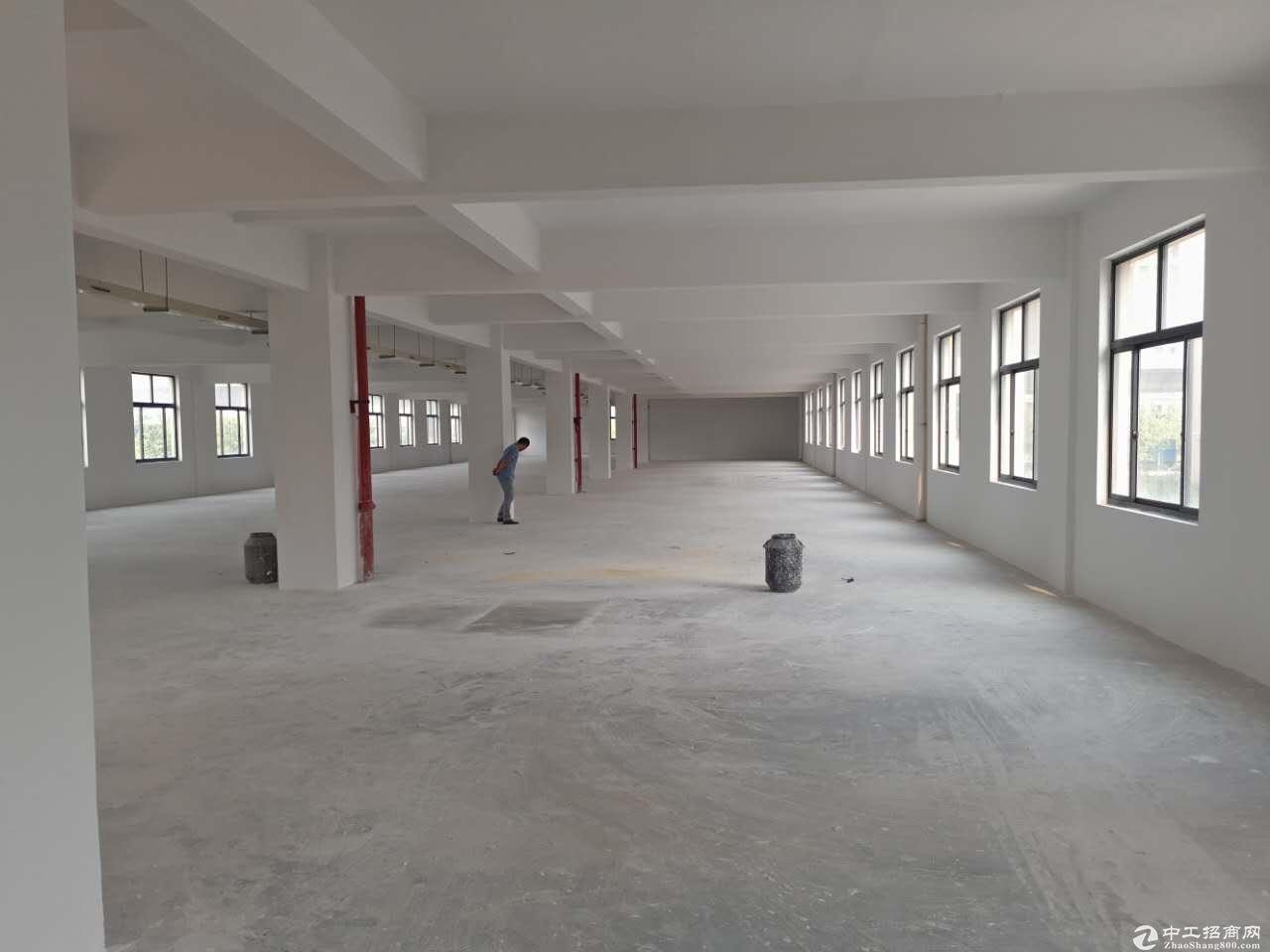 整层3000方厂房出租,适合仓储办公、淘宝、服装,加工等