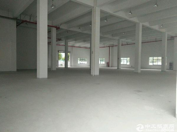 周市青阳路附近3800平米全新厂房