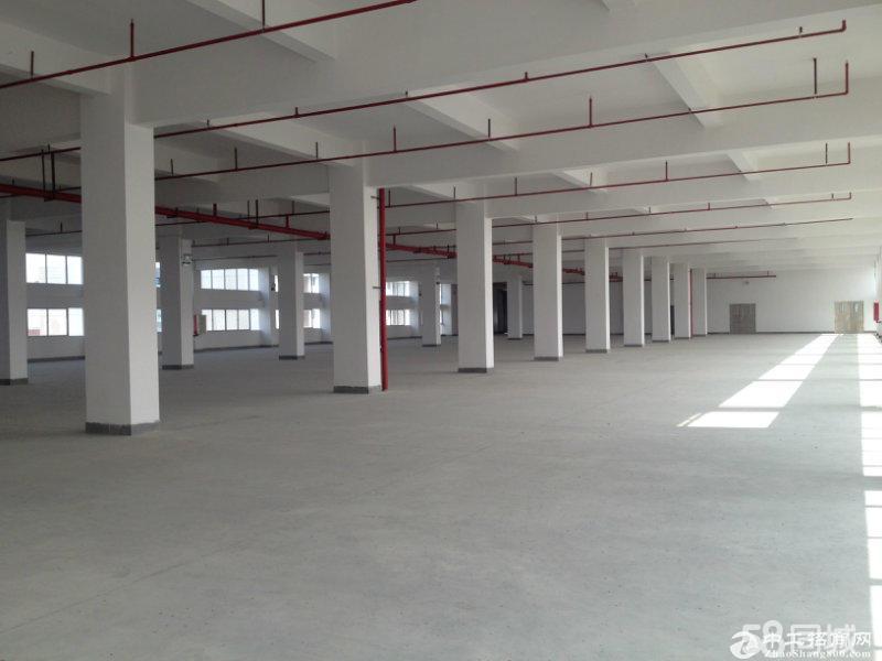 东阜路边全新高端红本厂房10500平方出租、可分租