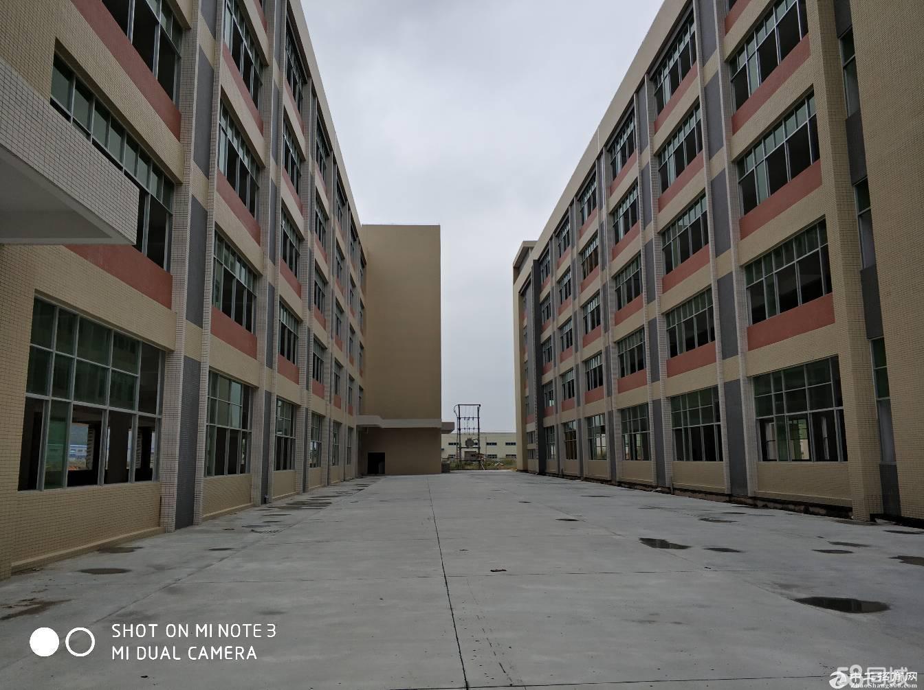 东凤电子城标准厂房3850平方厂房出租,交通便