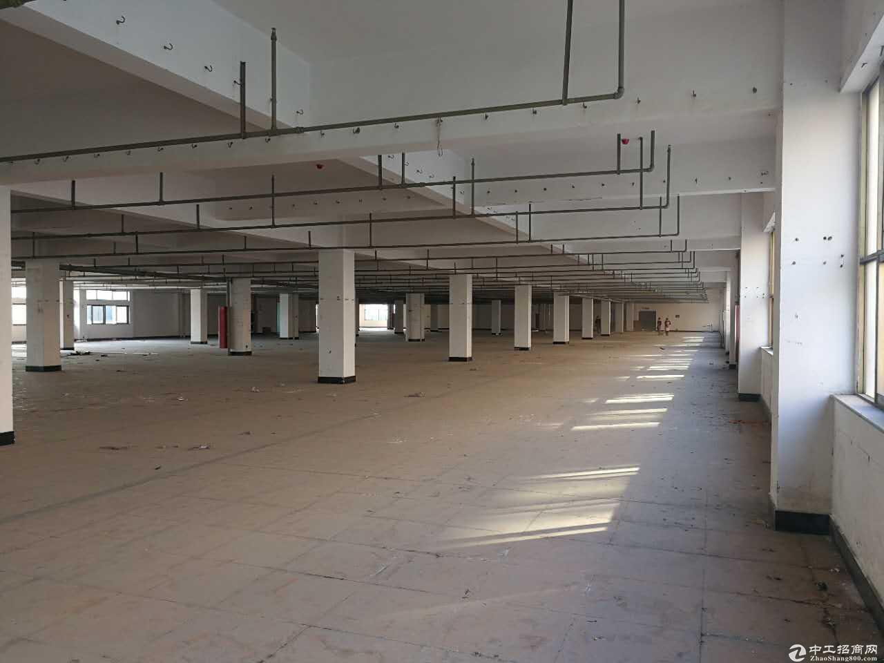 开发区整层2000方没有税收要求可做仓库