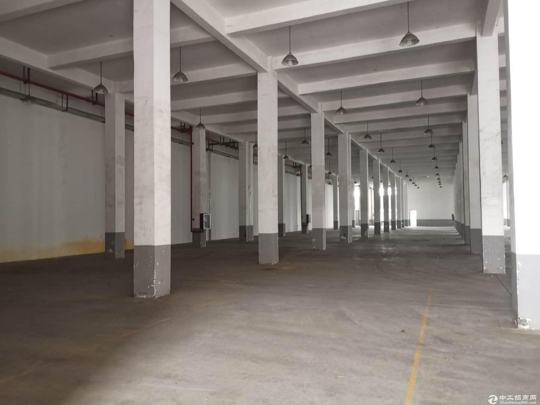 独栋300方 层高6米 可做仓库 大车进出方便-图4
