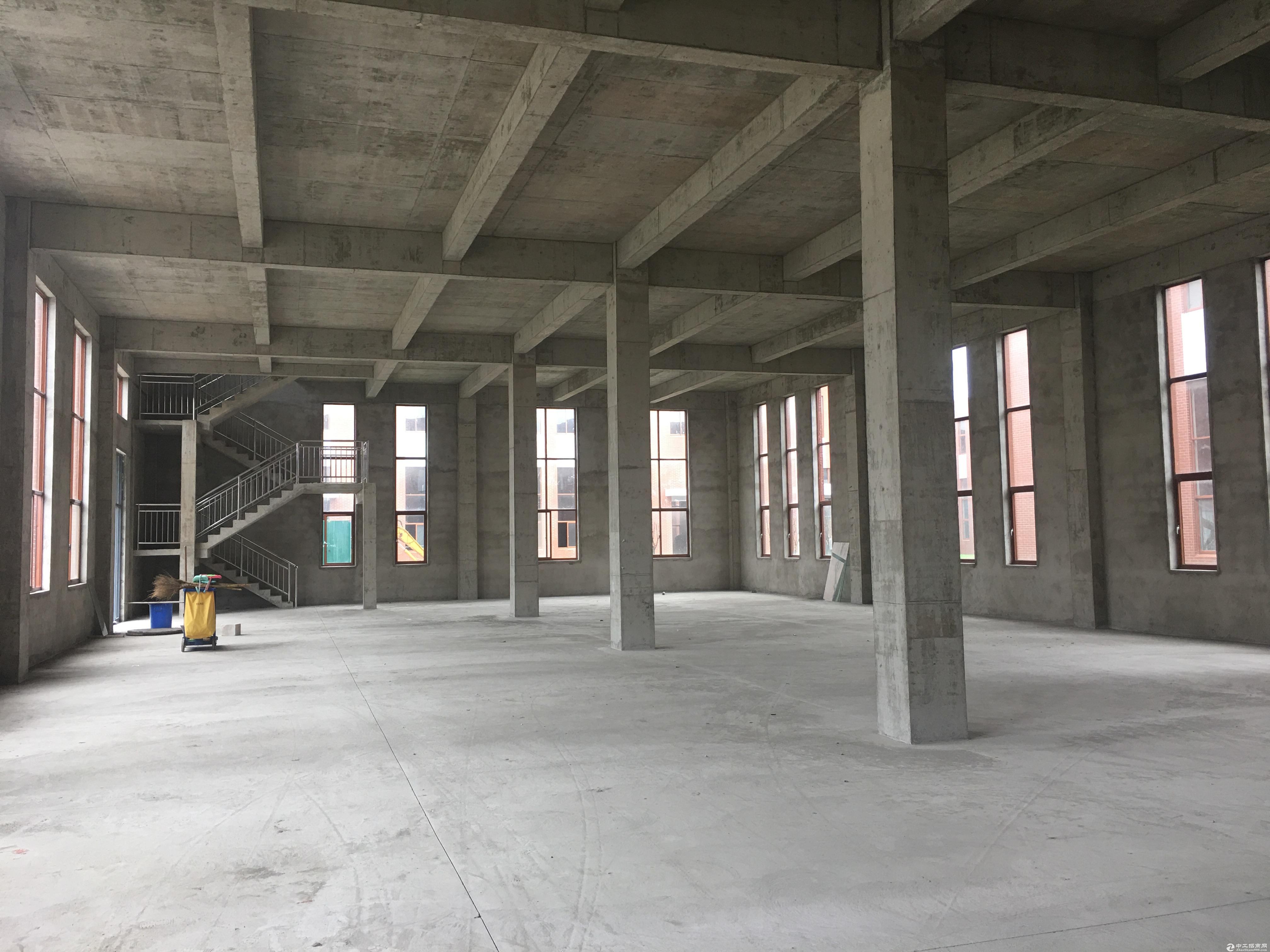 肥西、双凤标准化产业园区厂房出售层高8.1米