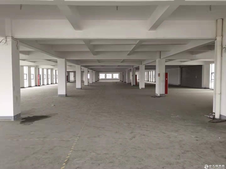 萧山机场高架红垦4000方仓库可分割实拍照片 实惠