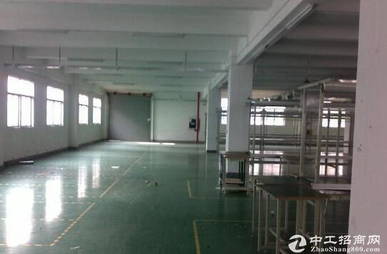 3000平米标准厂房可租可售可定制