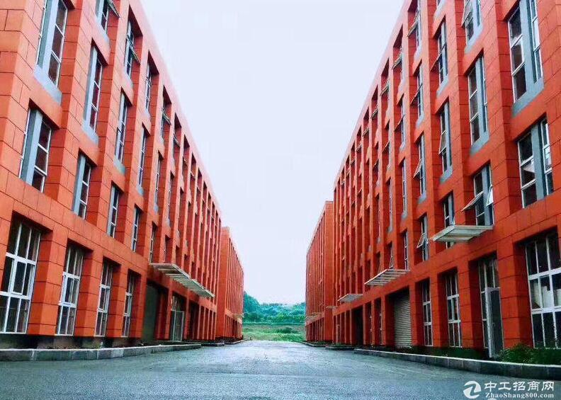 两江新区3200㎡独栋标准厂房现房出售