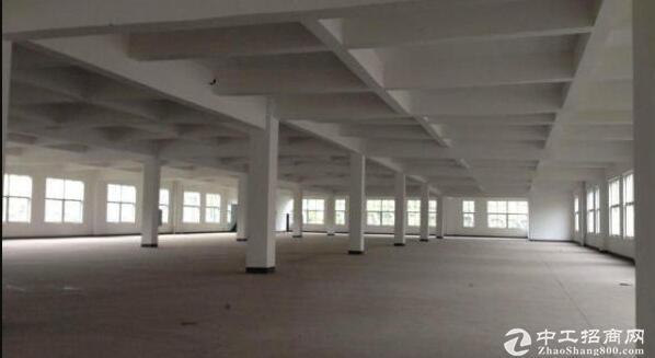 16000高标准框架厂房出售面积可分