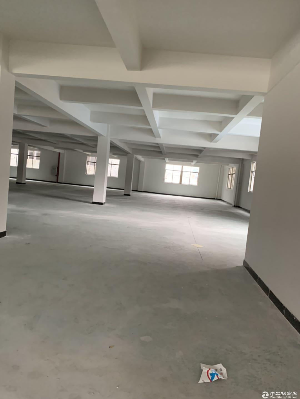 江海高新东路楼上厂房1700方出租  适合电商灯饰
