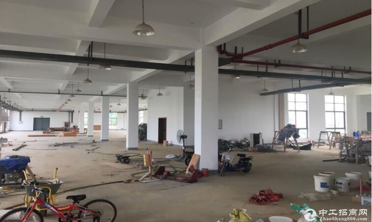 高淳经开区凤山路,标准厂房出租,层高4.5米图片2