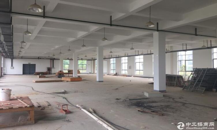 高淳经开区凤山路,标准厂房出租,层高4.5米图片3