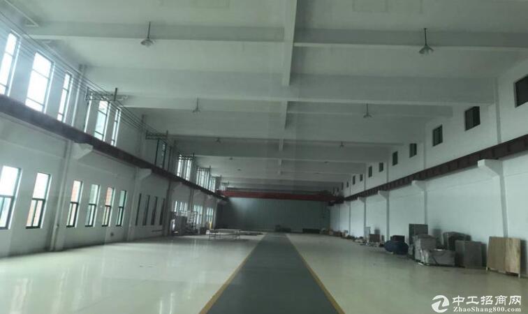 高淳经开区茅山路,独门独院标准厂房出租,层高4.5米-图2