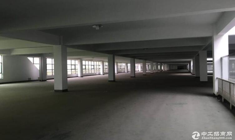 高淳经开区茅山路,独门独院标准厂房出租,层高4.5米-图3