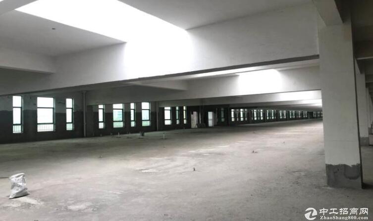 高淳经开区茅山路,独门独院标准厂房出租,层高4.5米-图4