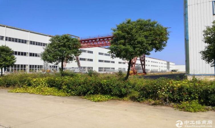 高淳经济开发区凤山路,厂房出售,高18米带10t行车图片4