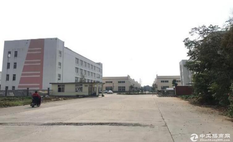 高淳经开区茅山路,厂房出租,高12米,可装10t行车